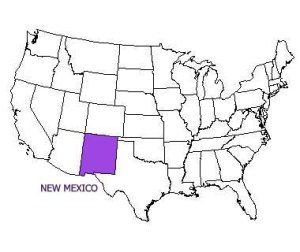Image of New Mexico on map -- the site of attack of teen in public bathroom