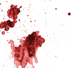 Image of blood stains, which can connect the criminal to the crime scene